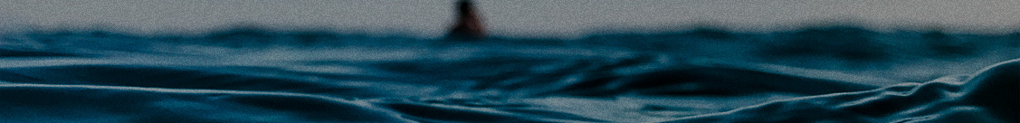 banner interna